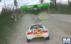 Rally Car Hero