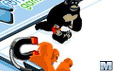 Monkey Curling Championship