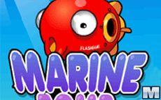 Marine Bomb