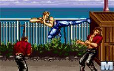 Jogo de Karate Blazers
